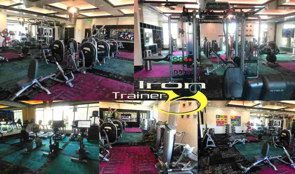 fitness facility inside elysian apartments with weights and cardio equipment